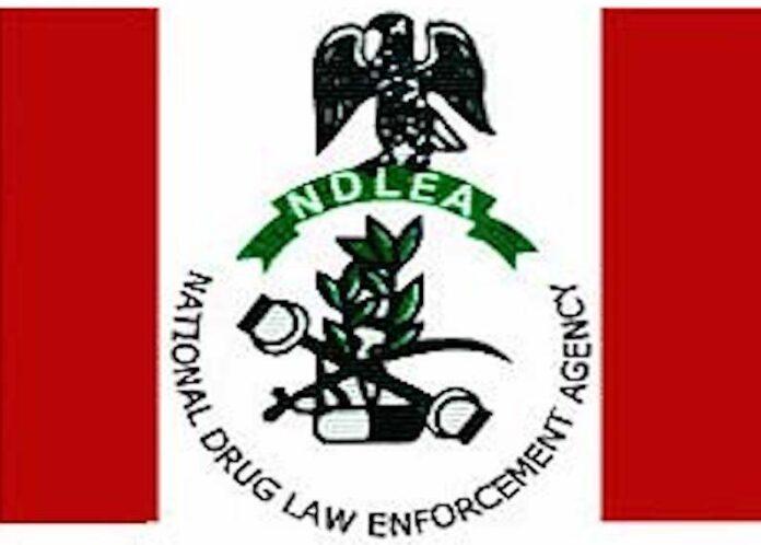 Nigeria Arrests 8,634 Drug Traffickers In 8 Months, Seizures Worth N100Bn - Marwa