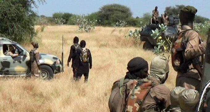 Boko Haram Kills 3 Soldiers in Maiduguri Shootout, Scores Dead | Scud News