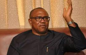Stop Budgetary Allocation For Office Of The First Lady, Says Ex-Gov Peter Obi