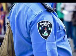 Police In Delta Arrest Suspected Armed Robber, Cultist, Recover Ammunition